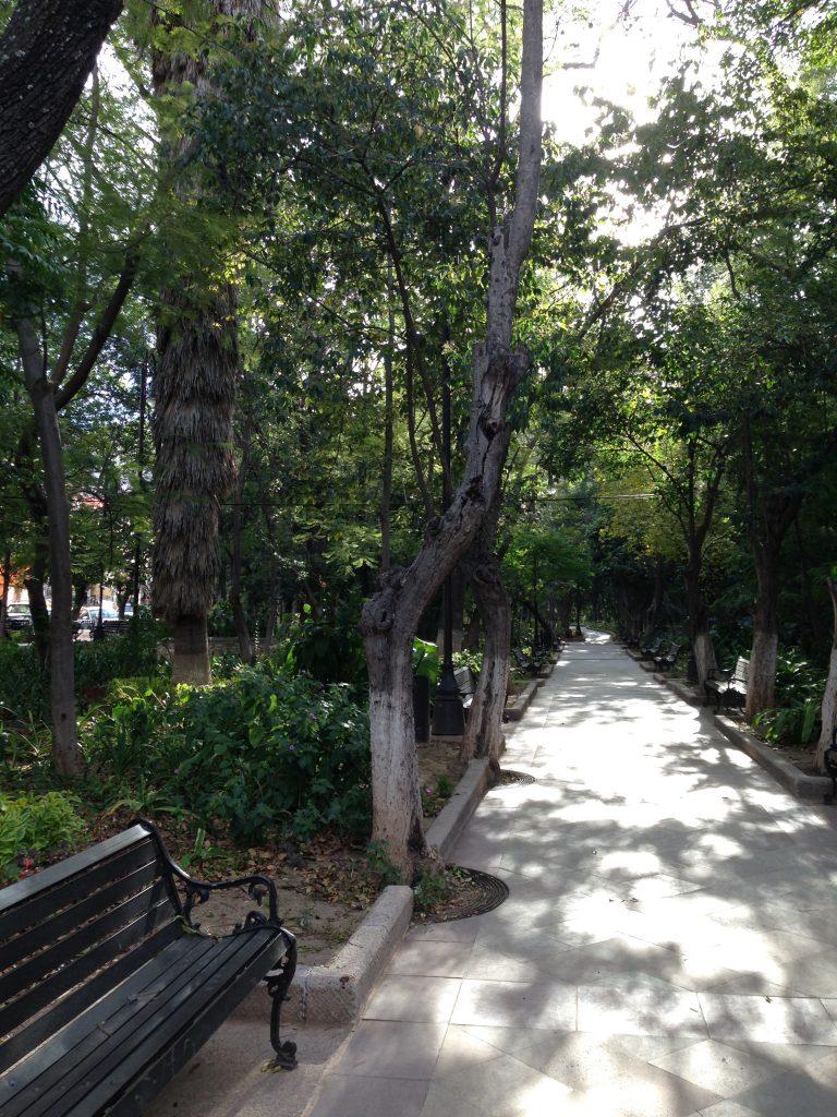 park presa Historic Town of Guanajuato
